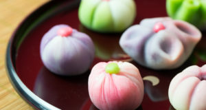 Wagashi Introduction